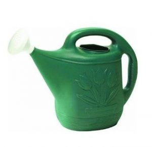 Novelty MFG 30301 Watering Can