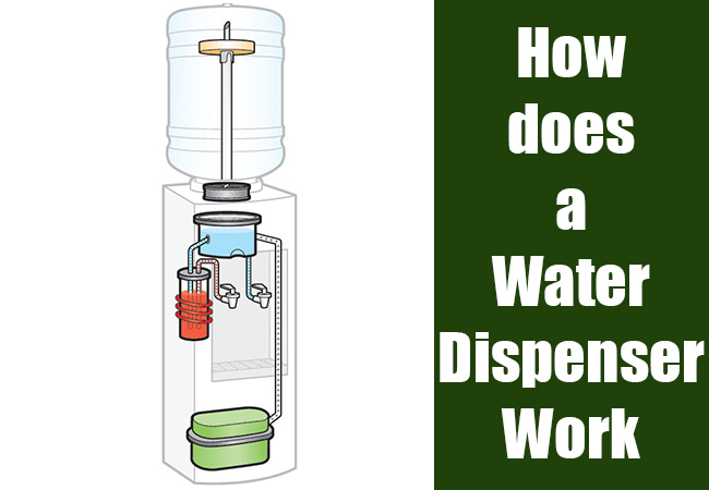 How Does A Water Dispenser Work Experts View