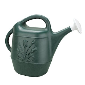 Union 63065 Watering Can with Tulip Design