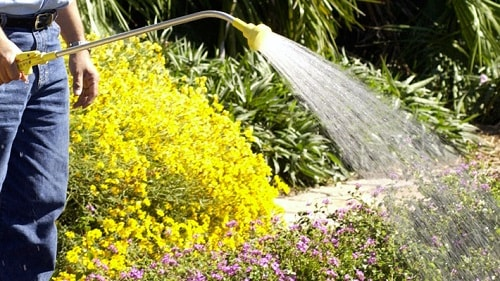 How To Use A Watering Wand In The Garden