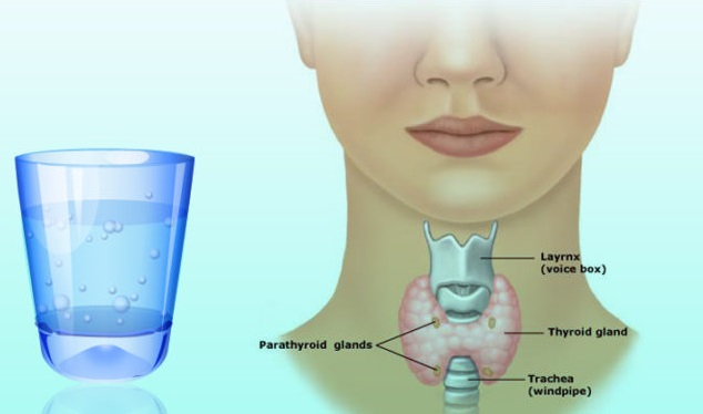 Drink Water for Thyroid